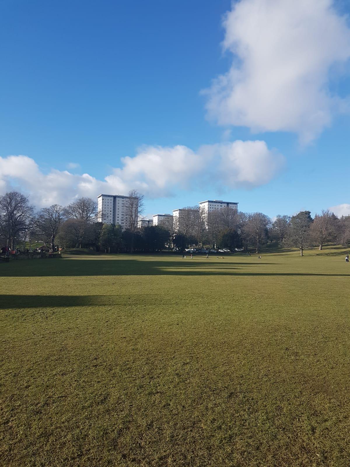 Callendar Park High Flats